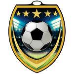 Custom Vibraprint Shield Soccer Medallion (3