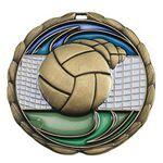Custom Antique Volleyball Color Epoxy Medallion (2-1/2