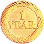 Custom Bright Gold 1 Year Service Lapel Pin