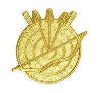 Archery Bright Gold Chenille Lapel Pin