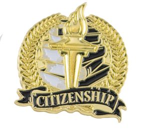 Bright Gold Academic Citizenship Lapel Pin (1-1/8)