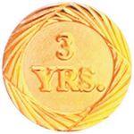 Custom Bright Gold 3 Year Service Lapel Pin