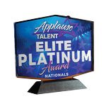 Custom Texture Tone Custom Shaped Acrylic Awards