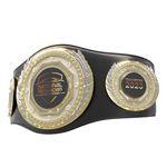 Custom Vibraprint Presidential Champion Belt
