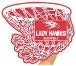 Basketball Net Mitt