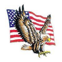 Bald Eagle with Flag Temporary Tattoo