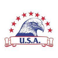 USA Eagle Temporary Tattoo