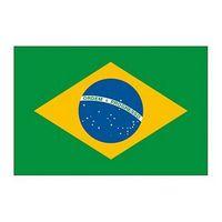Brazil Flag Temporary Tattoo