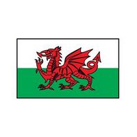 Wales Flag Temporary Tattoo