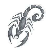 Small Gray Scorpion Temporary Tattoo