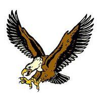 Flyin Eagle Temporary Tattoo