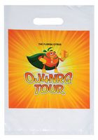 "Full Color Digitally Printed Die Cut Plastic Bag (9""x13"") - Digital"