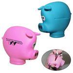 Custom Pocket Piggy Coin Holder