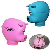 Pocket Piggy Coin Holder