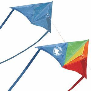 Custom Printed Plastic Delta Kites