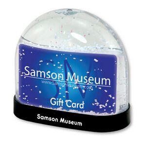 Customized Souvenir Snow Globes!