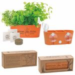 Custom Wall Sprouts Indoor Garden Blossom Kit w/Seeds & Planter