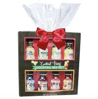 Cocktail Shaker Gift Kit with Mix