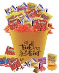 Custom Halloween Candy Basket with 175 Candies