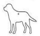Custom Paper Scents Air Freshener (Dog)