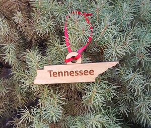 Custom Printed Tennessee State Shaped Ornaments
