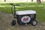 Custom Cruzin Cooler 250 Watt Brushless Hub Motor