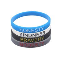 Eco-friendly Silicone Wristband - Adult Size