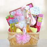Custom Special Stork Delivery Baby Girl Basket