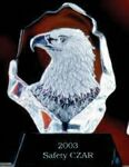 Custom Glacier Hand Blown Glass American Eagle Bust Award (6.5
