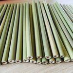 Custom Bamboo Drinking Straws - Reusable & Organic