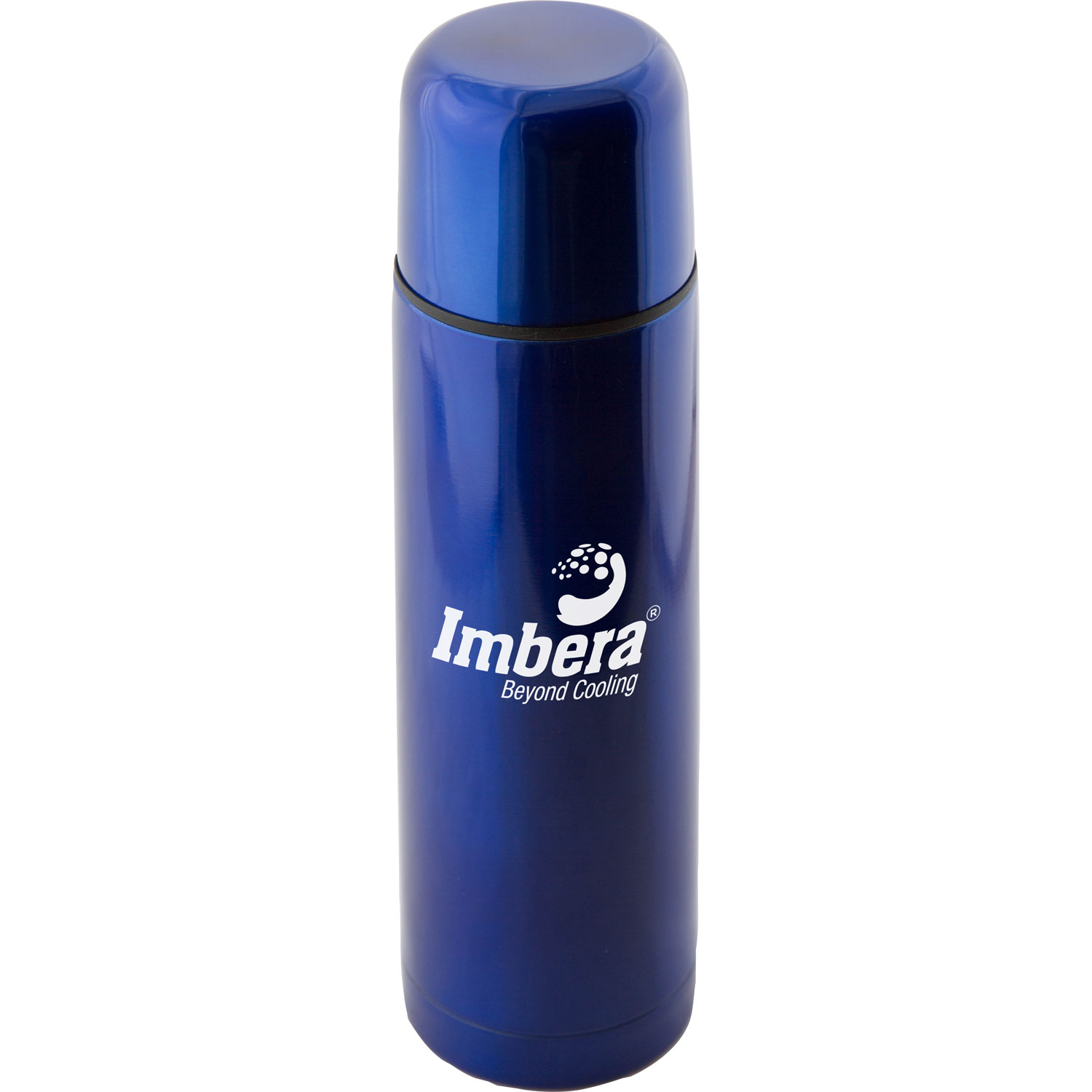 (16.9 Oz.) Stainless Steel Thermo Bottle w/Case