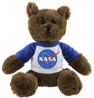 The Charming Chocolate Bear in Raglan, A Fuzzy Stock Teddy Bear