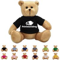 The Cheerful Brown Bear in T-Shirt, A Strong Stock Teddy Bear