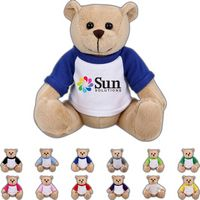 The Clever Beige Bear in Raglan, A Strong Stock Teddy Bear