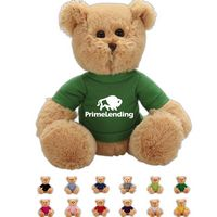 The Handsome Brown Bear in T-Shirt, A Fuzzy Stock Teddy Bear