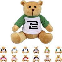 The Brave Brown Bear in Raglan, A Strong Stock Teddy Bear