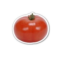 Tomato Magnet 2.67 Sq. In. & 15 MM Thick