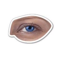 Realistic Eye - Magnet 2.56 Sq. In. & 15 MM Thick
