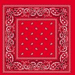 100% Micro-Polyester Paisley Bandanna 22X22