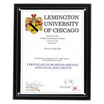 Custom Magnetic Clear on Black Acrylic Certificate Frame (10 1/4