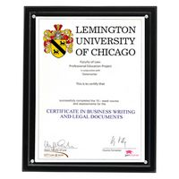 """Magnetic Clear on Black Acrylic Certificate Frame (10 1/4""""x12 1/4""""x1/2"""")"""