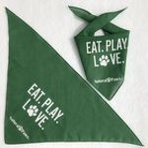 Pet triangle scarf