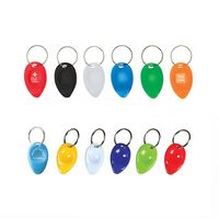 Plastic Lottery Scratcher Key Chain