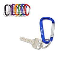 Carabiner Keychain With Ring
