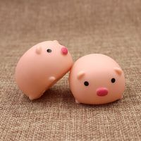 Squeeze Pig Animold Toy