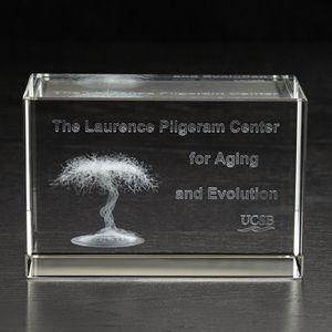 Extra Large Block 3D Crystal Award