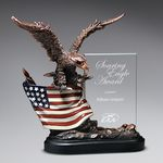 Custom Bronze Antique Resin Cast Eagle with Flag and Beveled Glass