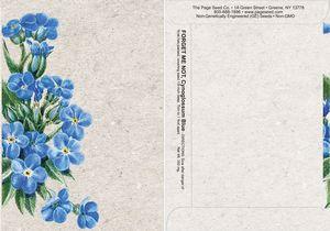 Watercolor Series Forget Me Not Seed Packet - Digital Print/Packet Back Imprint