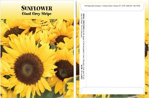Standard Series Sunflower Seed Packet - Digital Print /Packet Back Imprint