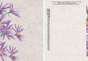 Watercolor Series Bee Seed Packet - Digital Print/Packet Back Imprint